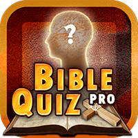 Rich results on Google's SERP when searching for any Bible game like Bible Quiz Pro.